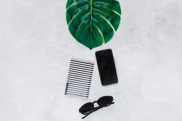 Green leaf, sunglasses, wallet and smartphone on plain backdrop