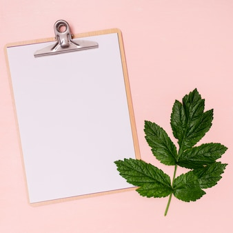 Green leaf with clipboard copy space