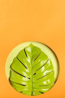 オレンジ色の背景とコピースペースと緑の葉