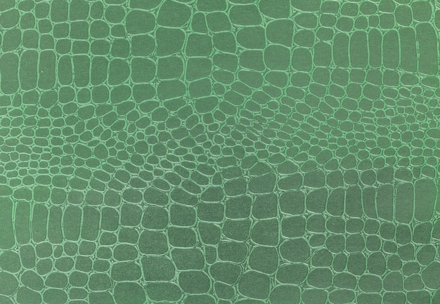 Green leather texture background, closeup photo,