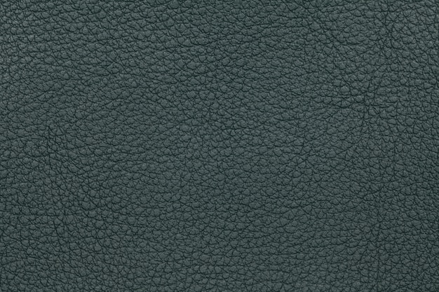 Green leather texture background. closeup photo.