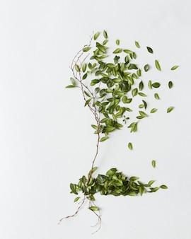 흰색 배경에 격리된 나무에서 녹색 잎이 떨어지고 있습니다. 땅에 떨어지는 잎이 있는 아름다운 나무.