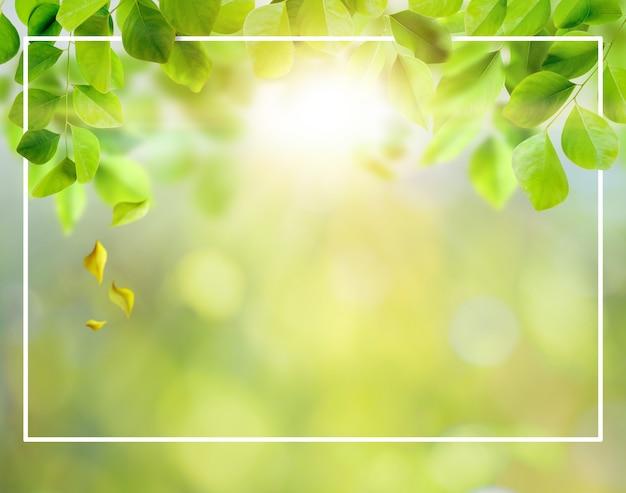 緑の葉の背景とテキスト用のスペースのあるレイアウト