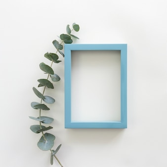 Green leaves and blue border empty blank photo frame over white backdrop
