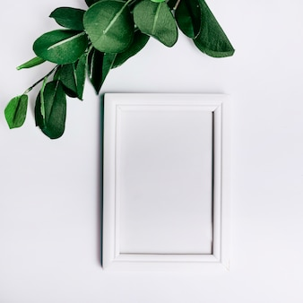 Green leaves over an empty frame against white background