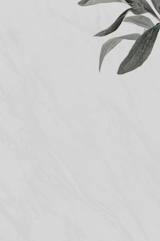 Foglie verdi su sfondo di marmo grigio