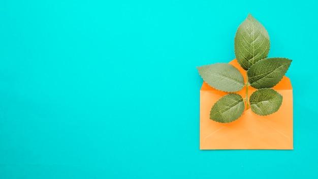 Зеленые листья в конверте