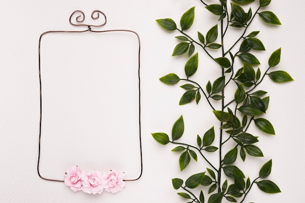 Green leaves near the empty frame decorated with pink roses on white backdrop