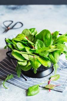 Зеленые листья шпината, мангольда и рукколы промытые на дуршлаге для приготовления салата или смузи.