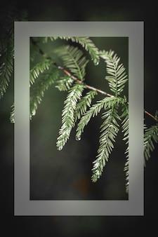 분기 카드에 녹색 잎