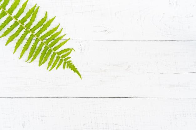 木の板の緑の葉