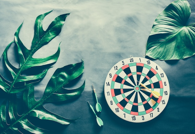 Green leaves plant growing with dart board, the tropical plant and game.