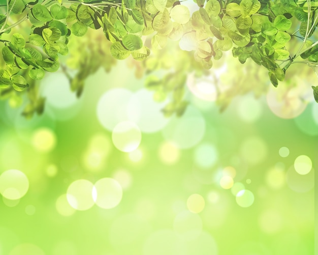 Green leaves on a sunny bokeh lights background