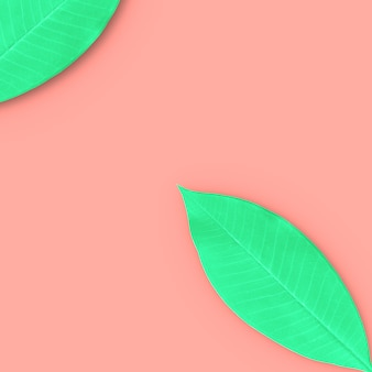 Green leaves with copy space for your text