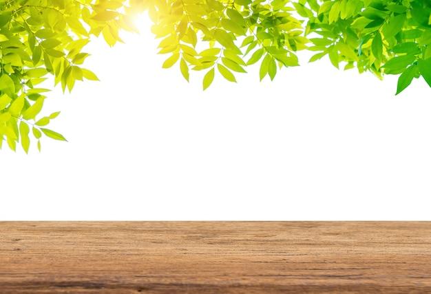 空の木製テーブルと緑の葉 Premium写真