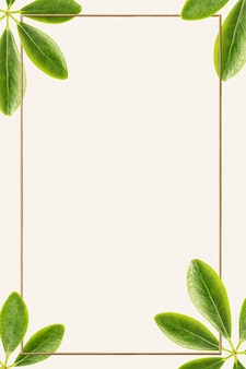 Green leaves with golden rectangle frame