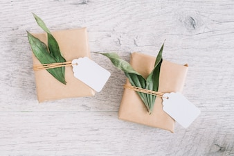 Green leaves with parcel and tag on wooden textured backdrop