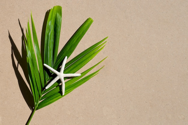 Green leaves with star fish on brown background. enjoy summer holiday concept. copy space
