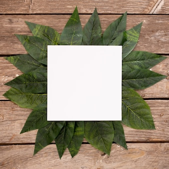 Green leaves on wood background with blank frame