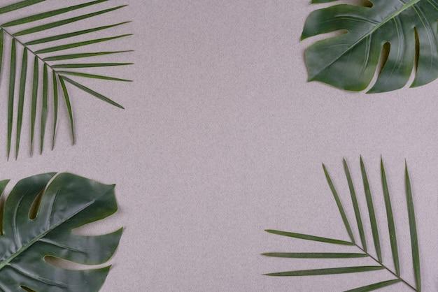 Зеленые листья на цветной поверхности