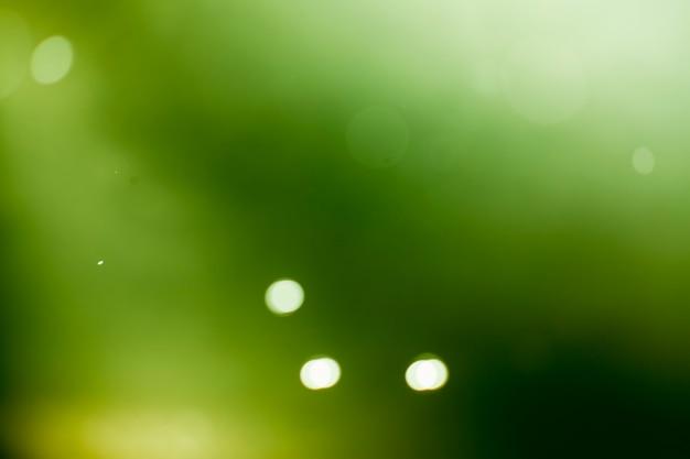 Green lights bokeh background.