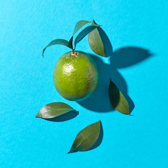 Green lime with leaves on a blue  with reflection of the shadows and copy space. healthy fruit. top view
