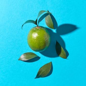 Зеленый лайм с листьями на синем с отражением теней и копией пространства. здоровые фрукты. вид сверху