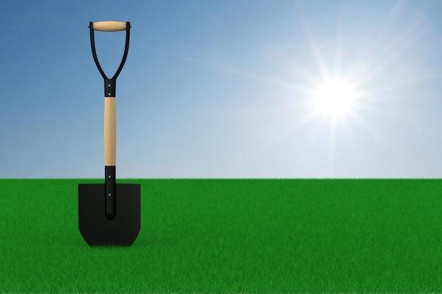 녹색 초원 그리고 하늘 배경에 삽입니다. 3d 일러스트
