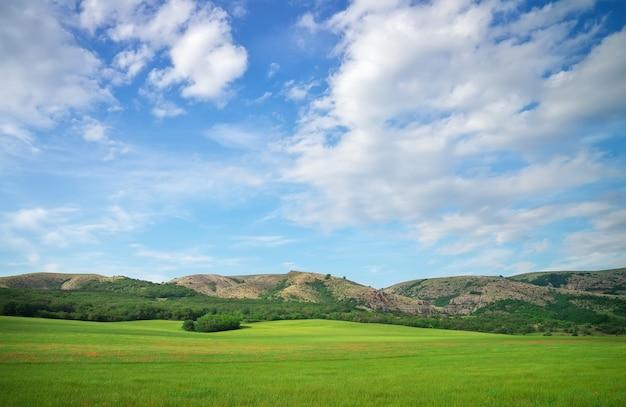 산과 푸른 흐린 하늘에 녹색 초원입니다. 자연의 구성.