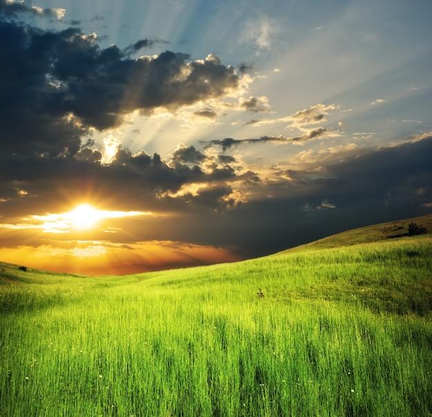 山の緑の牧草地。