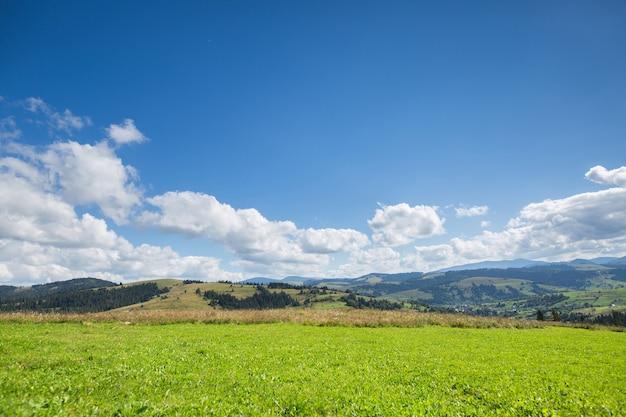 緑の牧草地、山と雲と青い空