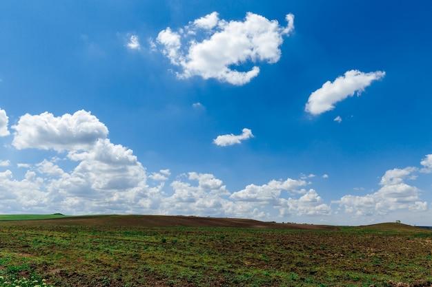 Зеленый луг под голубым небом с облаками красивый природный пейзаж