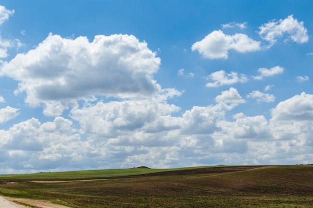 Зеленый луг под голубым небом с облаками. красивая природа, пейзаж.