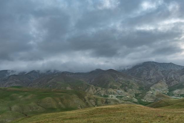 高地の緑の牧草地