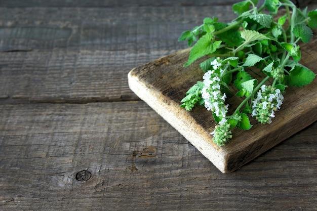 Green mint wood