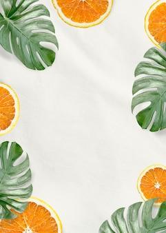 緑のモンステラの葉とオレンジ