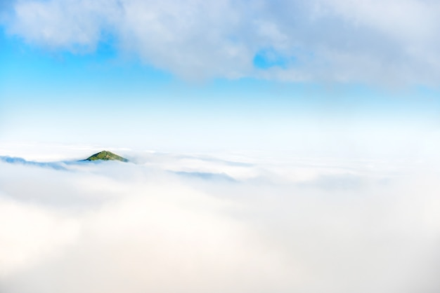 구름의 바다에서 녹색 산 정상