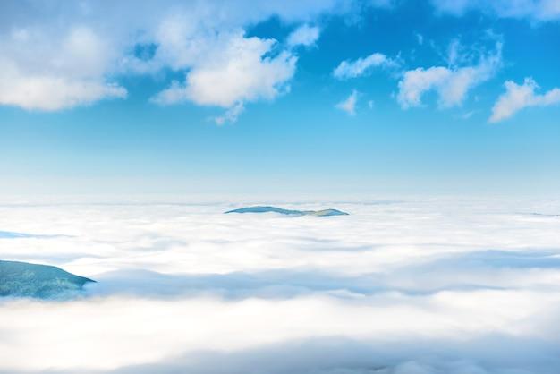 雲の海の緑の山頂