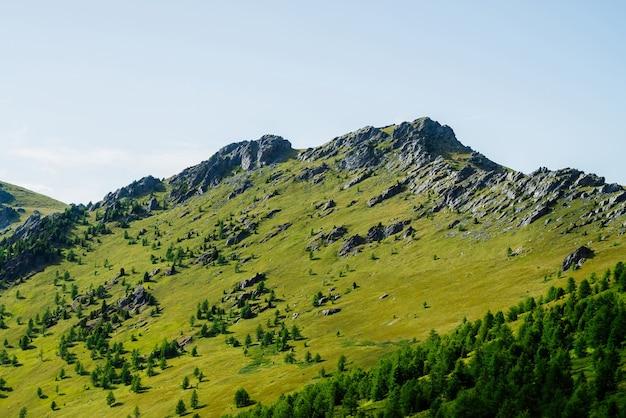 Зеленый горный пейзаж с ярко-зеленым склоном
