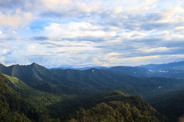 녹색 산과 최고 veiw에 숲