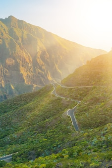 Green mountains hills and winding road near masca village on a sunny day, tenerife, canary islands, spain