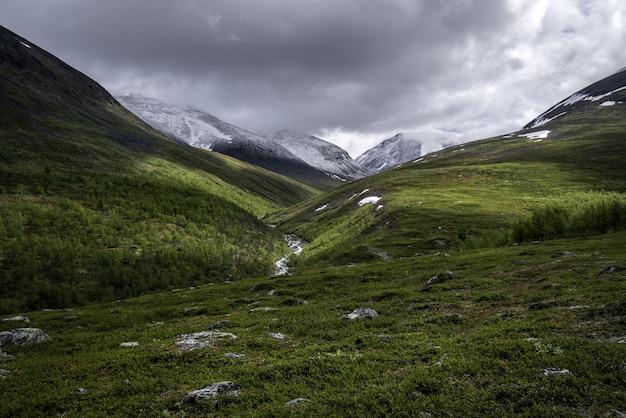 曇りの日に緑の山々