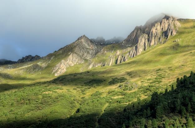 霧と緑の山々