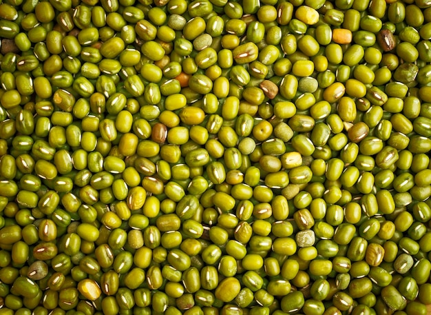 緑色の緑豆はテクスチャの背景