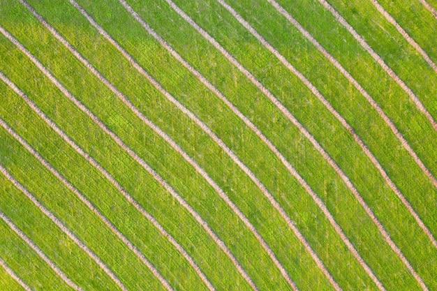공중 관점에서 대각선 구조와 녹색 자연 배경