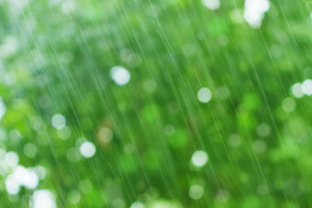 Green nature background with raindrops