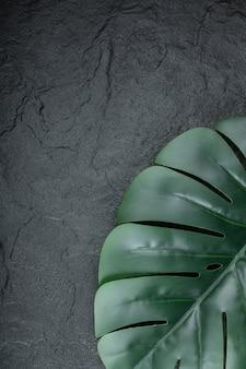 블랙에 잎의 녹색 자연 브런치입니다.