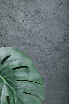 黒に葉の緑の自然ブランチ。