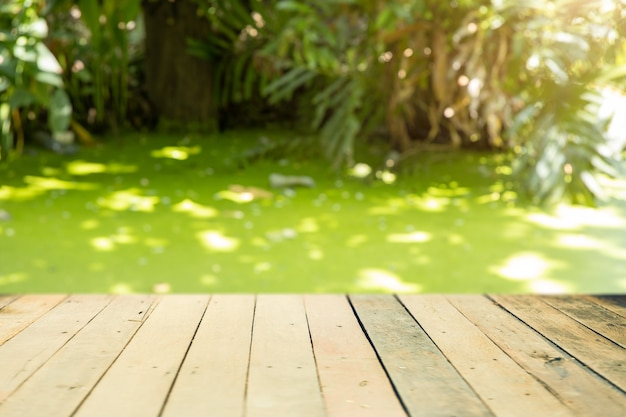 Green nature swamp  blur with wooden waterfront for product advertising montage background