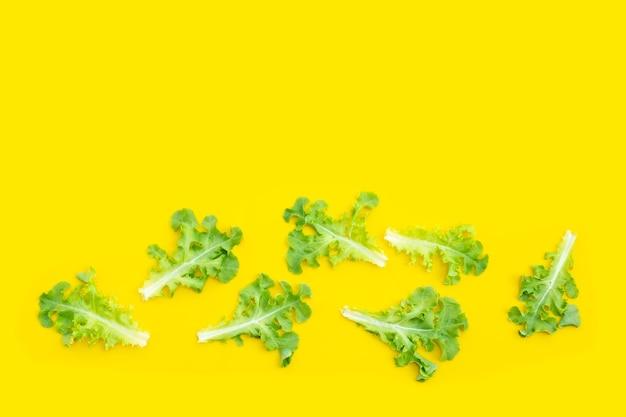 黄色い壁にグリーンオークレタスの葉。上面図